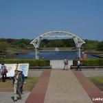 Hitachi Seaside Park 01