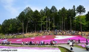 Hitsujiyama Park 03