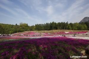 Hitsujiyama Park 08