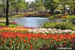 Showakinen Park 04