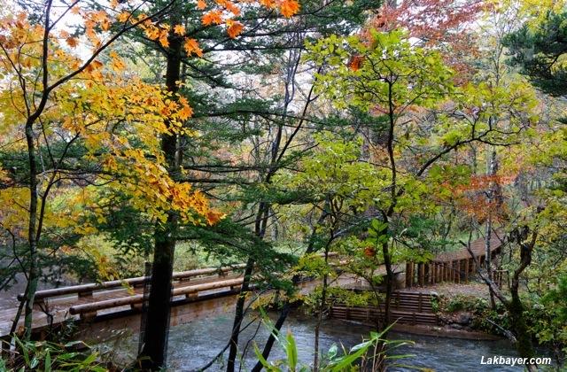 Oku-Nikko - Odashiro-Bashi Bridge
