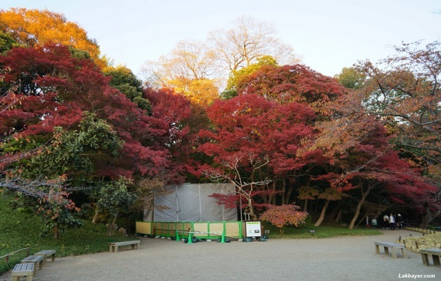 Koishikawa Korakuen - Maroya Area