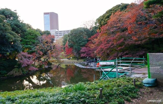 Koishikawa Korakuen - construction along the pond