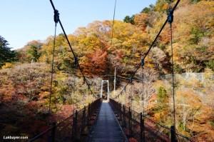 Okutama Hike - Shidaraku-bashi bridge