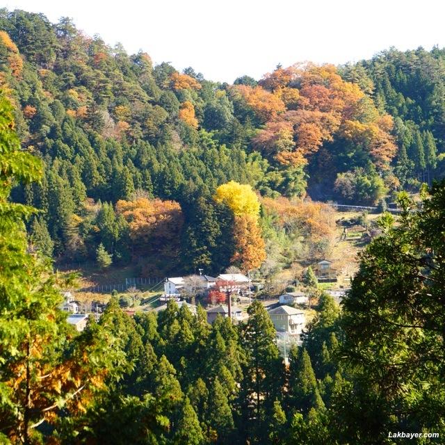 Okutama Hike - Village