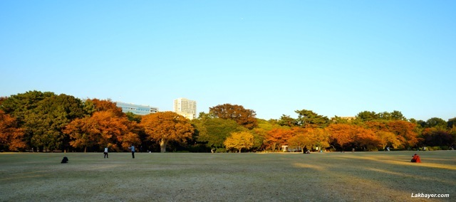 Shinjuku Gyoen - English landscape garden