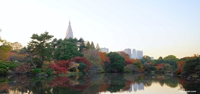 Shinjuku Gyoen - middle pond