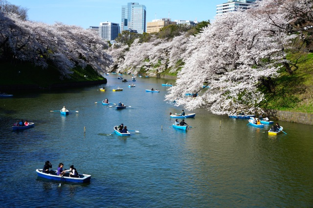 Chidorigafuchi boating area