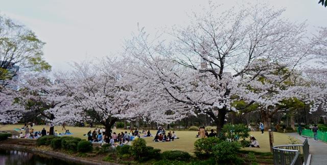 Kitanomaru Park 01