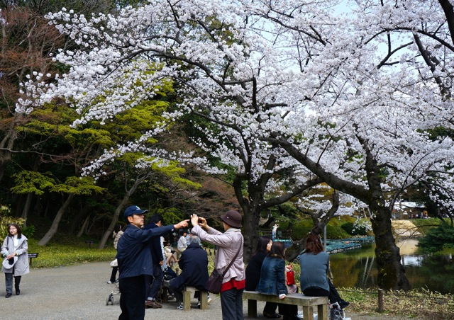 Korakuen - tourists