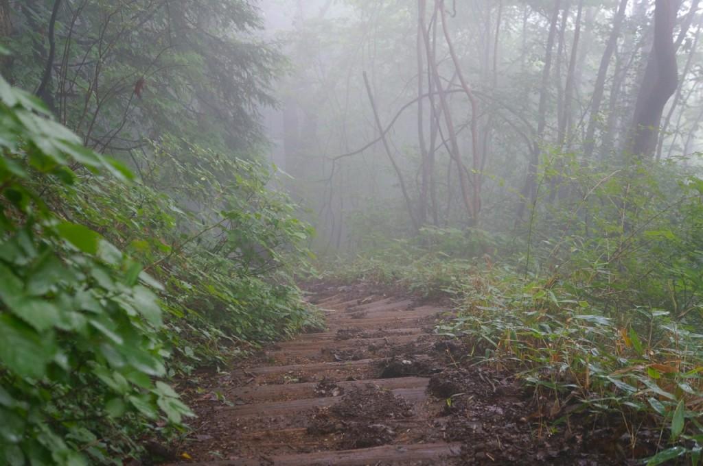 Mt. Jinba - stairs