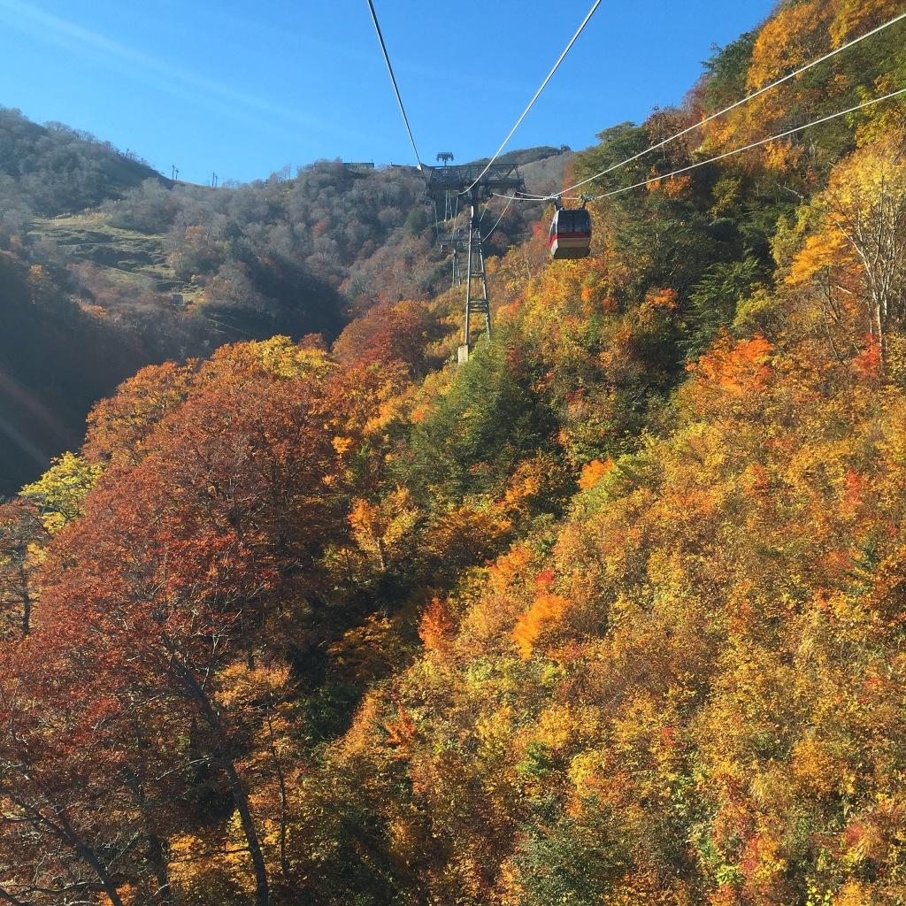 Autumn 2014: Tenjindaira & Ichinokurasawa 03