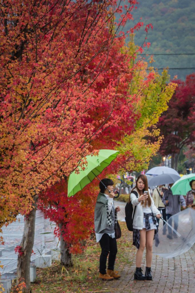 Autumn 2014: Kawaguchiko 03