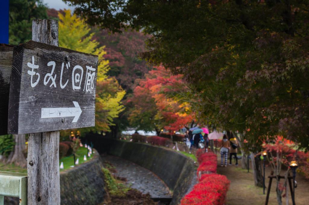 Autumn 2014: Kawaguchiko 13