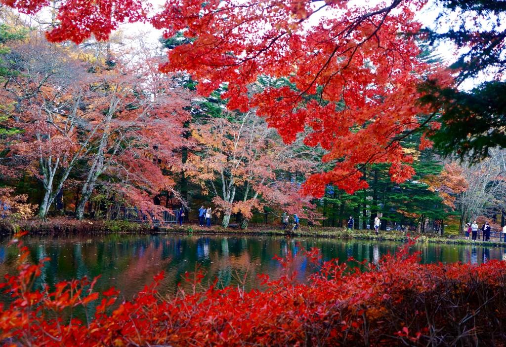 Autumn 2014: Karuizawa 08