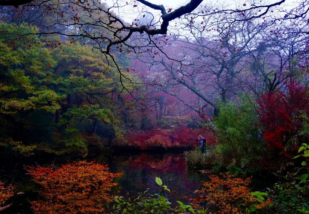 Autumn 2014: Karuizawa 09