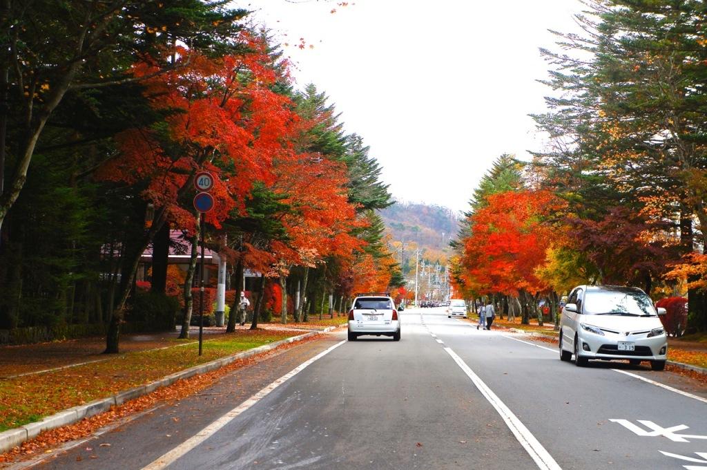 Autumn 2014: Karuizawa 04