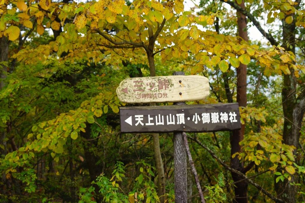 Autumn 2014: Kawaguchiko 07