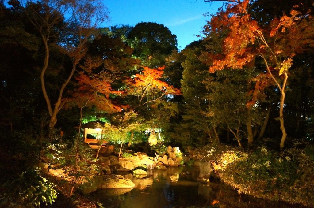 Autumn 2014: Rikugien Garden - 06