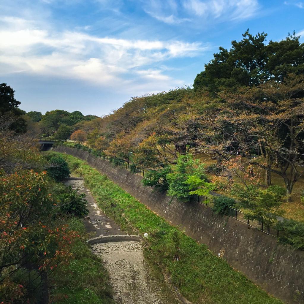Showakinen_2015-10-09_01