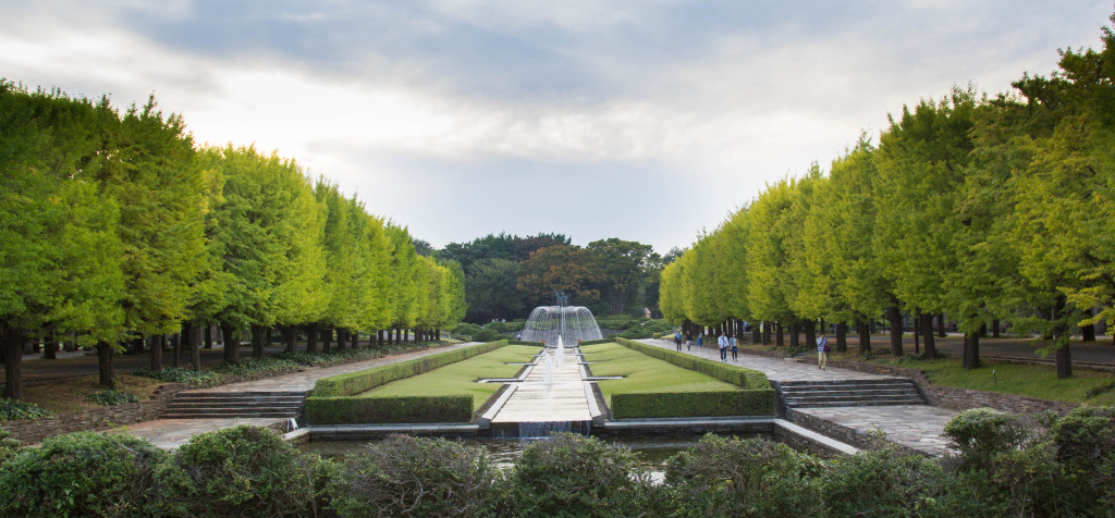 Showakinen_2015-10-09_02