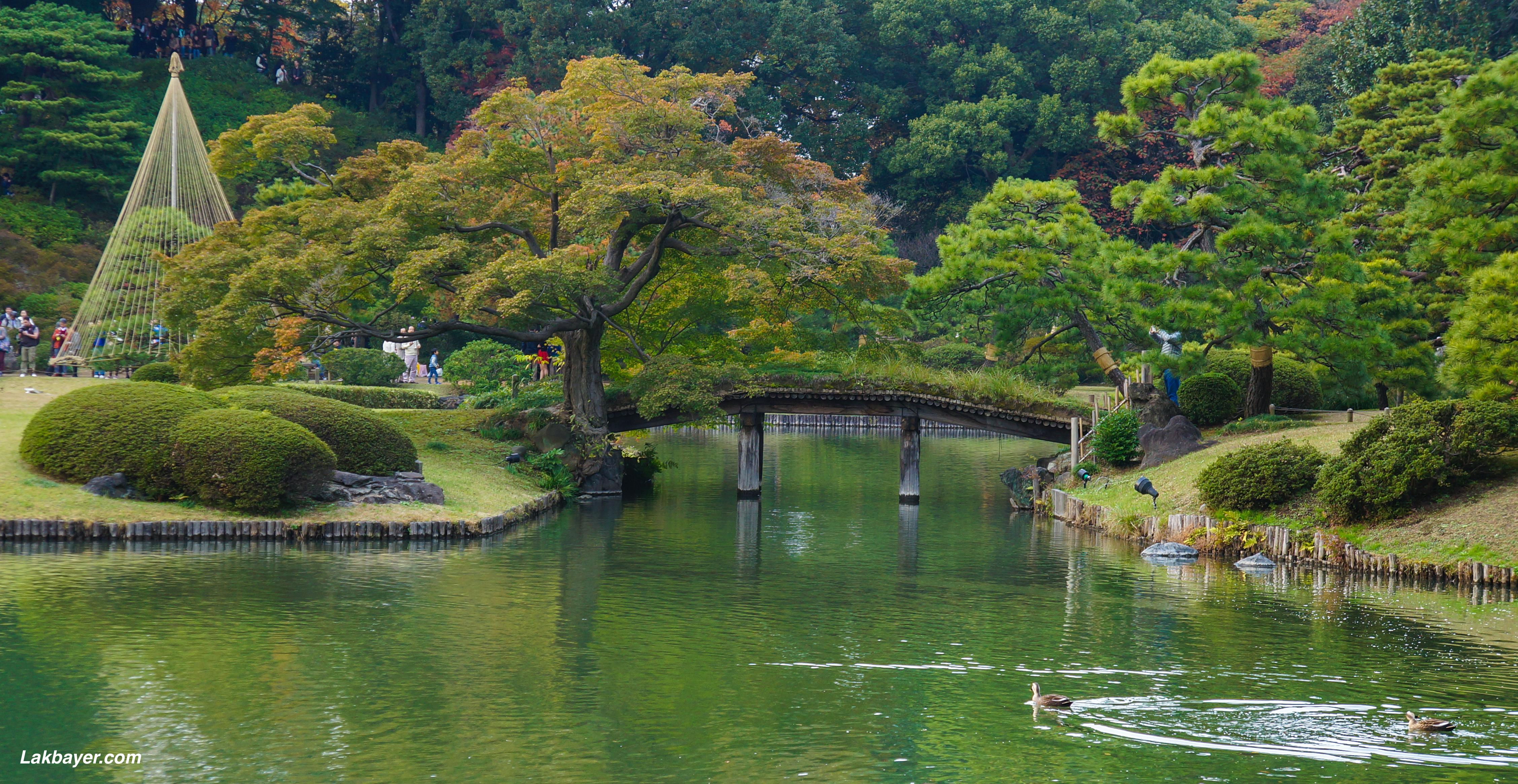 Autumn 2015 rikugien garden lakbayer for Garden pool tokyo