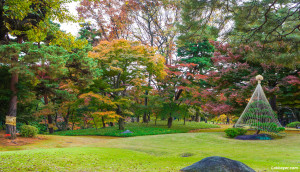 Tonogayato_Garden01