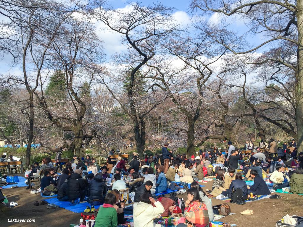 Inokashira_Park_03