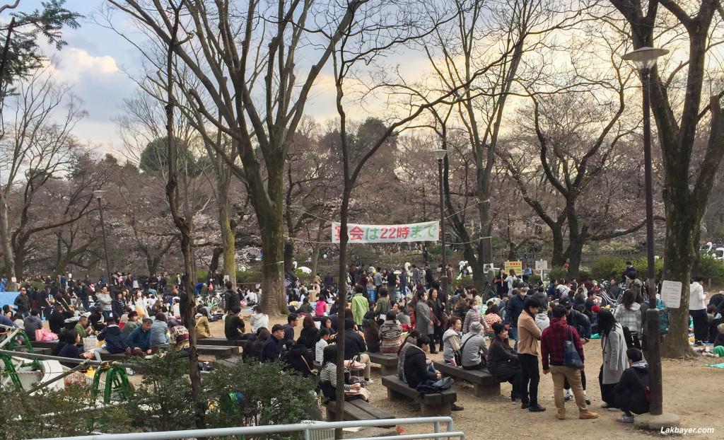 Inokashira_Park_06
