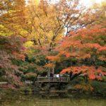 autumn2016-hibiya_park02
