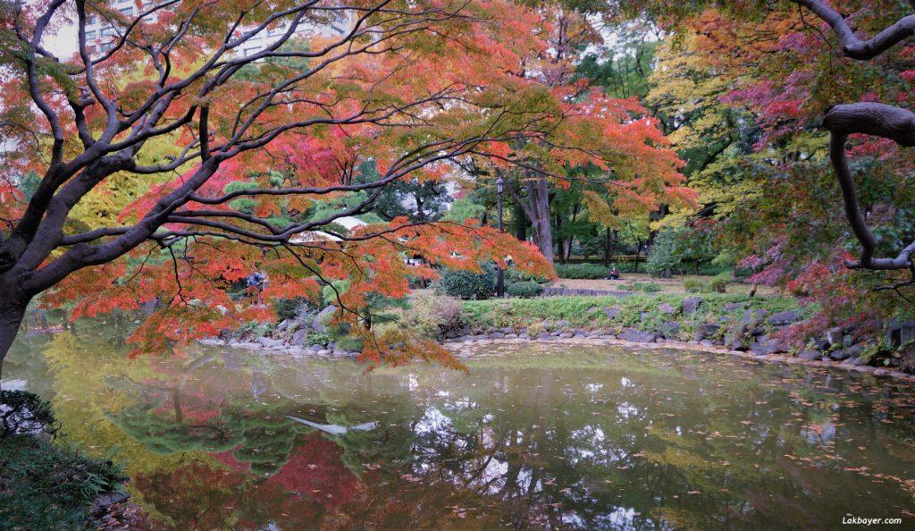 autumn2016-hibiya_park04