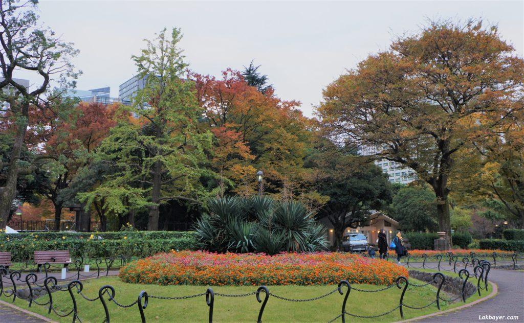 autumn2016-hibiya_park05