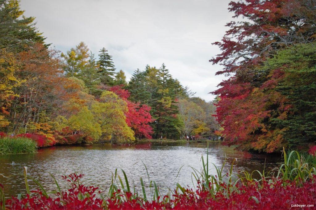 autumn2016_karuizawa04
