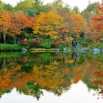autumn2016_showakinenpark09