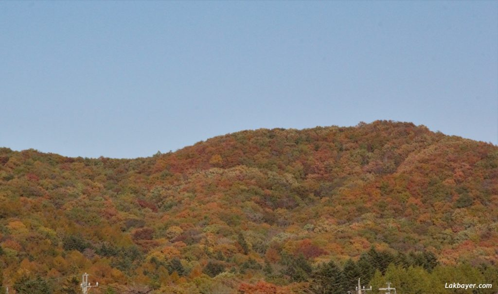 Autumn2016_Karuizawa01