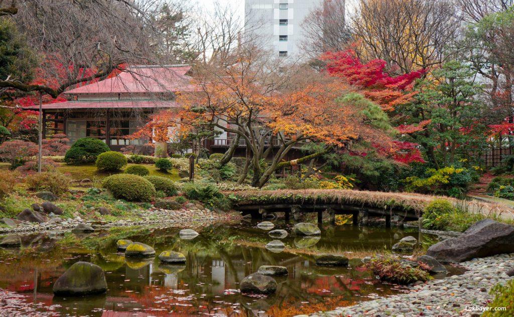 autumn2016-koishikawa-korakuen-01