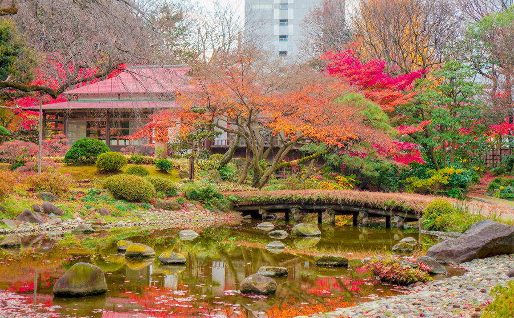 Koishikawa Korakuen Garden Garden Ftempo