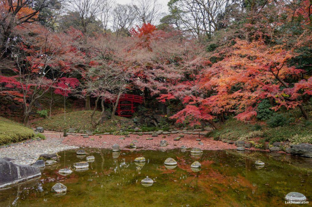 autumn2016-koishikawa-korakuen-02