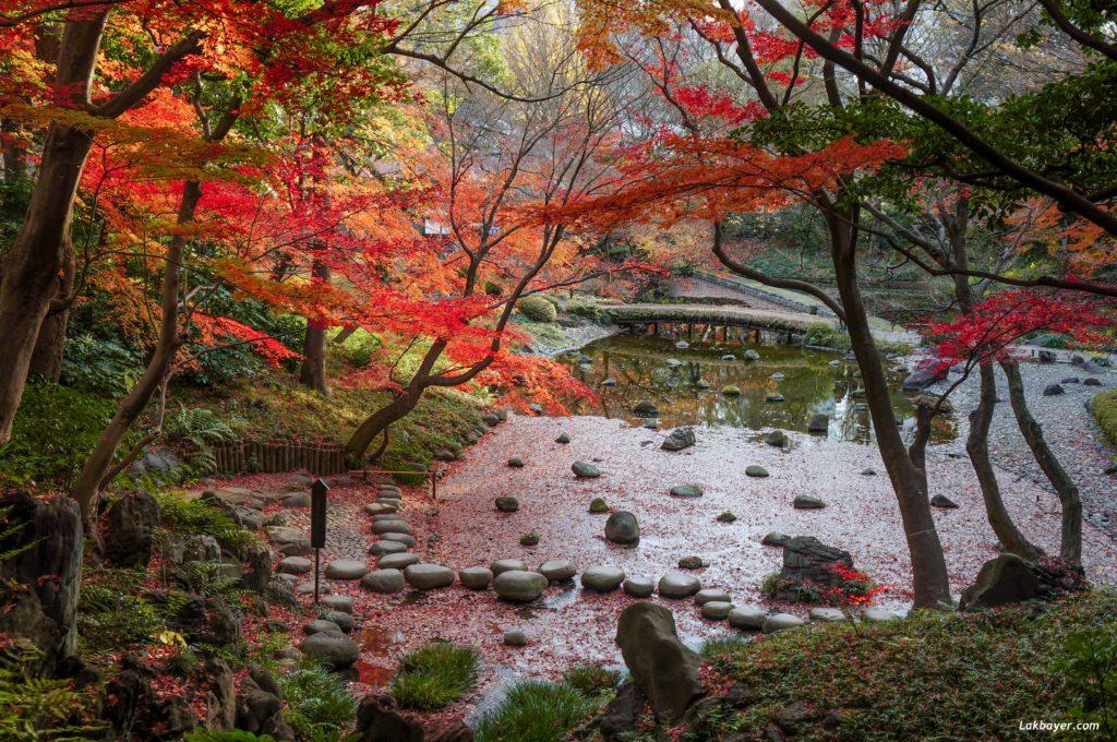 autumn2016-koishikawa-korakuen-03